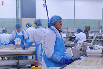 Food packing factory with workers in PPE on a production line