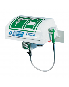 Wall Mounted Emergency Eye/Face Wash with Integral Lid and Handheld Diffuser