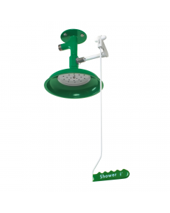 Ceiling mounted laboratory safety shower