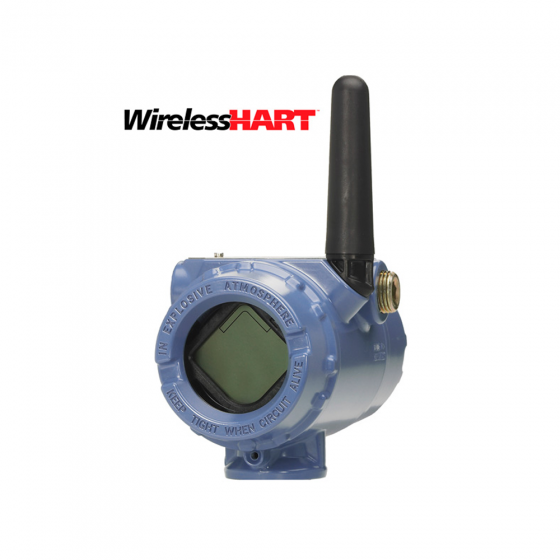 Remote wireless alarm