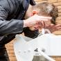 Wall mounted ABS closed bowl eye wash